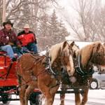 sleigh festival