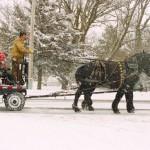 sleigh rides